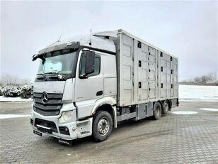 camion bétaillère MERCEDES-BENZ Actros 2543 6x2