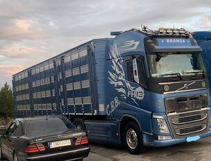 camion bétaillère VOLVO TOP FH13 540-EURO 6 -4 level Jumbo PLAVAC