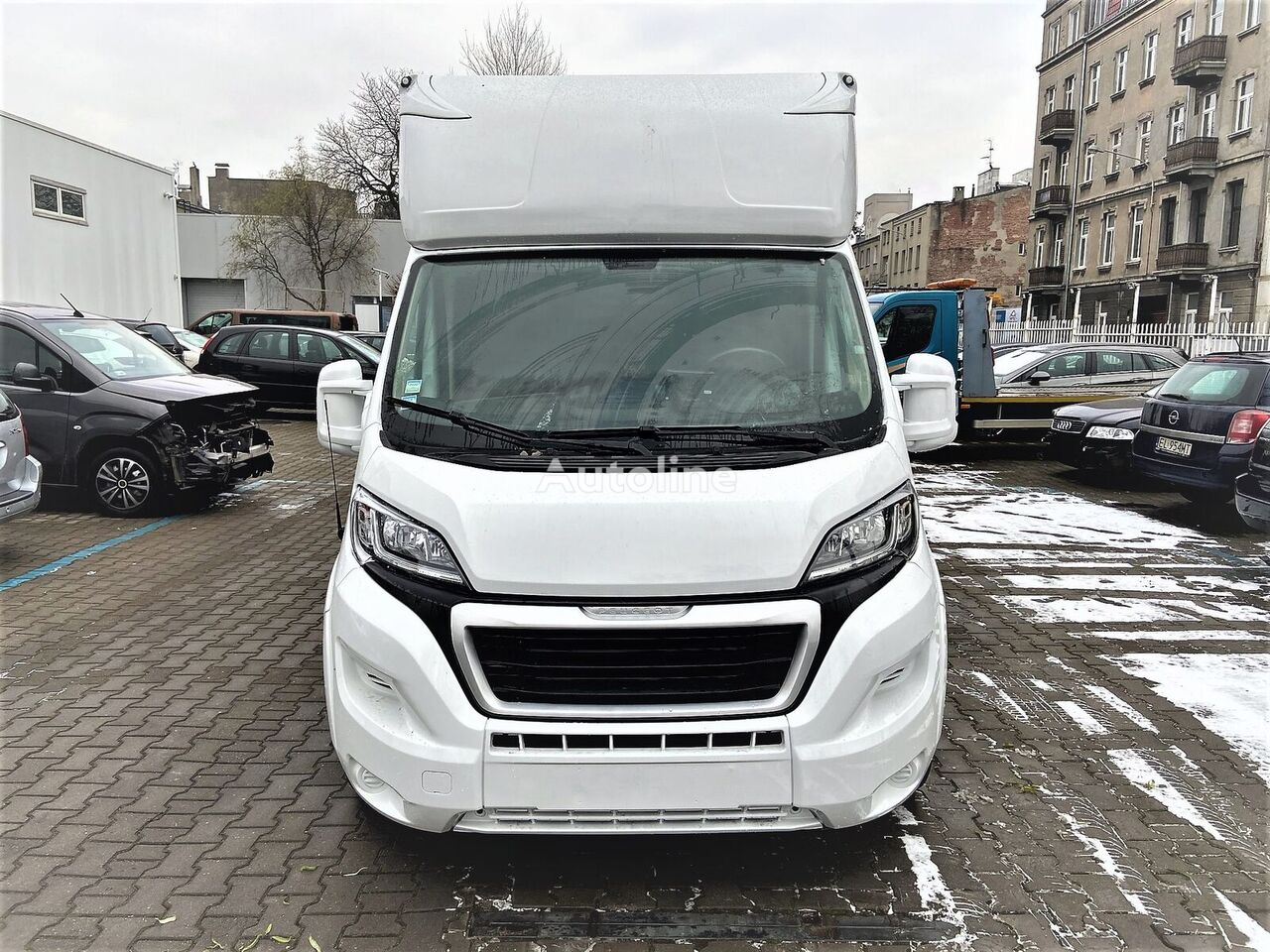 camion chevaux PEUGEOT Boxer neuf